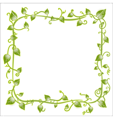 15 Leaf Frame Vector Images