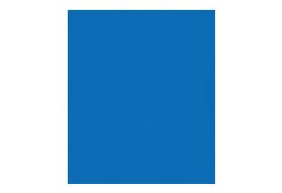 Blue Person Icon