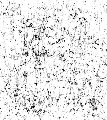 12 Distressed Vector Screenprint Images