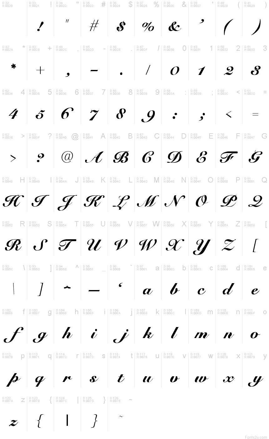 Elegant Script Font Letters