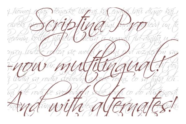 Free Elegant Calligraphy Fonts