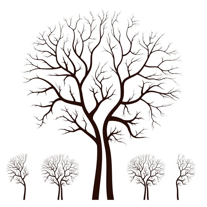 Leafless Tree Clip Art