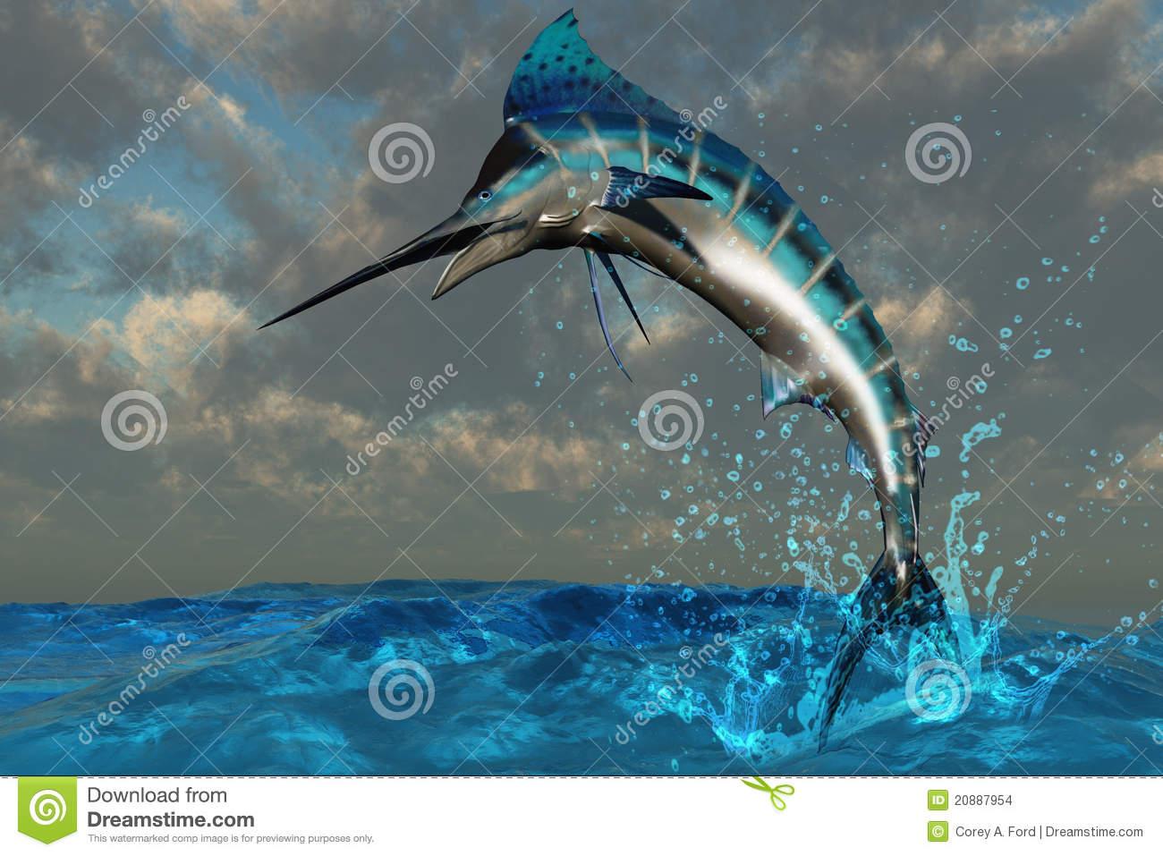 18 Blue Marlin Splash Vector Art Images