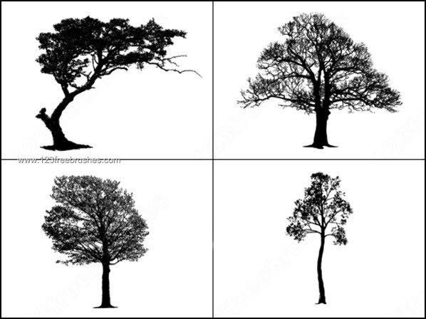 Free Photoshop Tree Brush