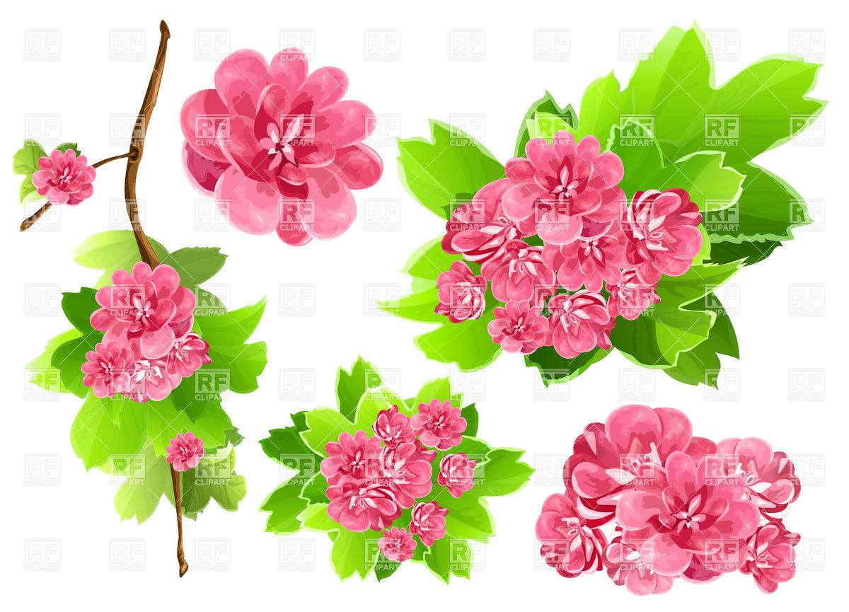 Free Spring Flower Clip Art