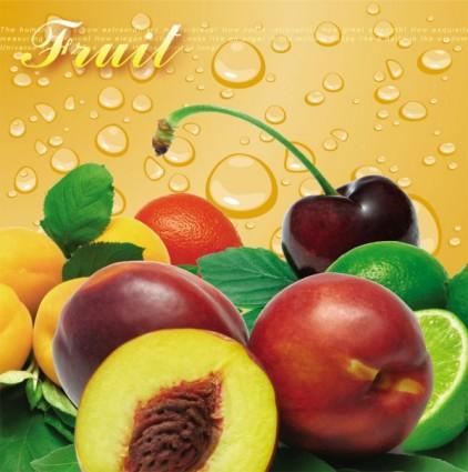 Fruit Psd Free