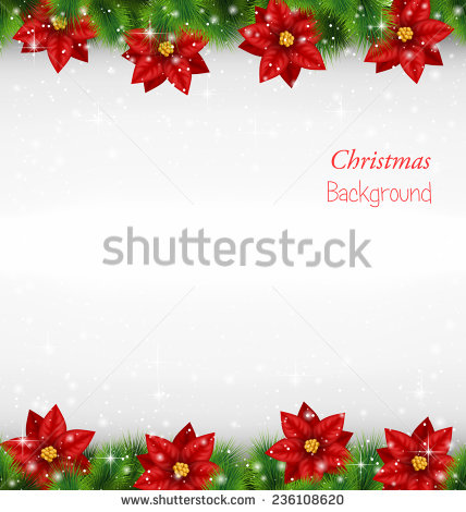 Green Background with Borders Poinsettia