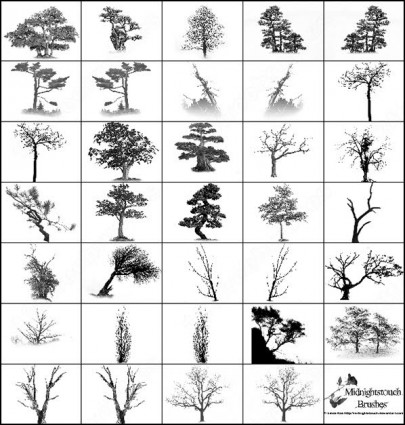13 Tree Brush Photoshop Images