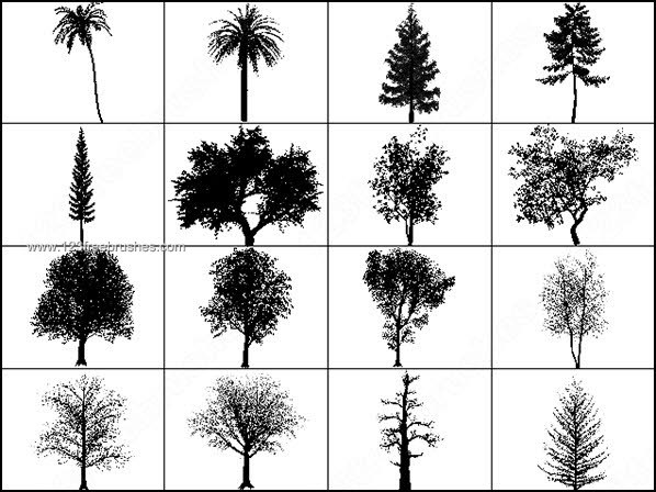 Photoshop Tree Brushes