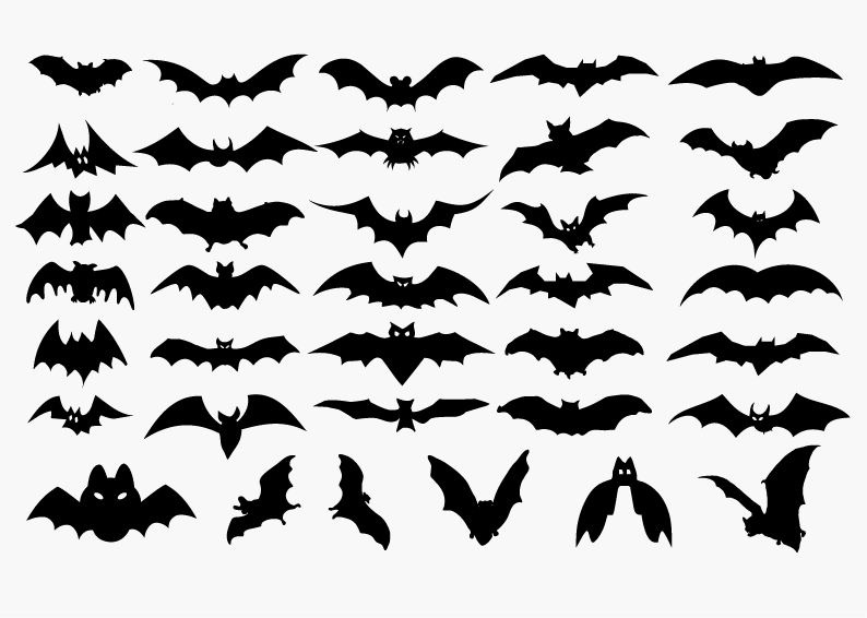 11 Halloween Bat Vector Images