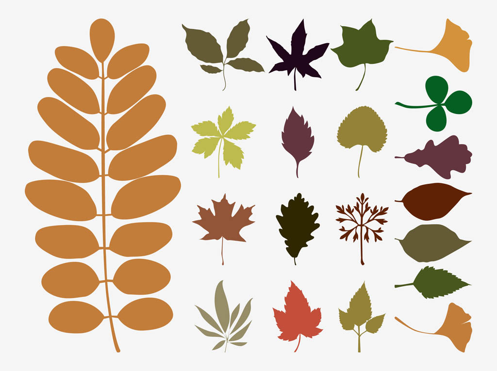 15 Free Vector Fall Leaves Images