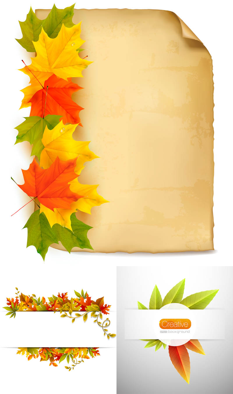Free Vector Fall Leave Clip Art