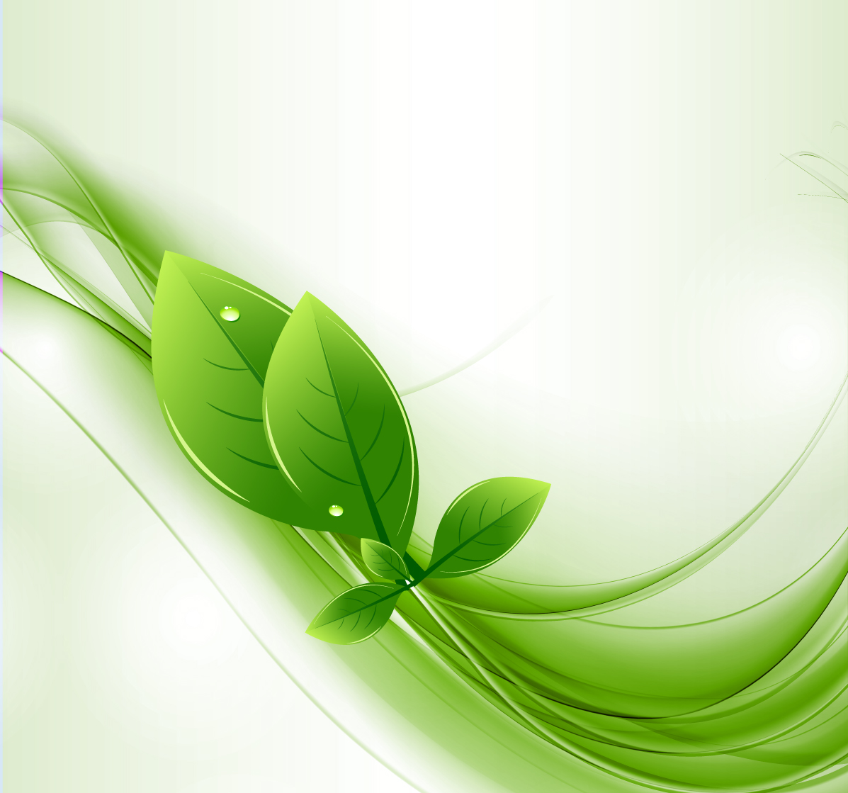 Green Eco-Leaf Vector Image