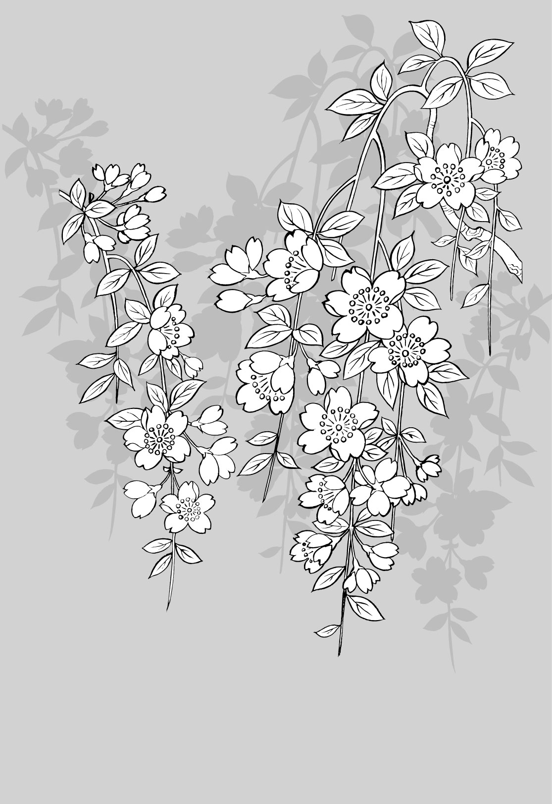 Japanese Flower Line Drawing : Garden flowers vector line art images flower