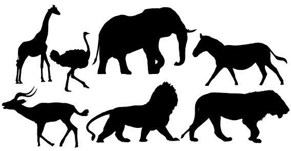 13 African Animal Templates Images