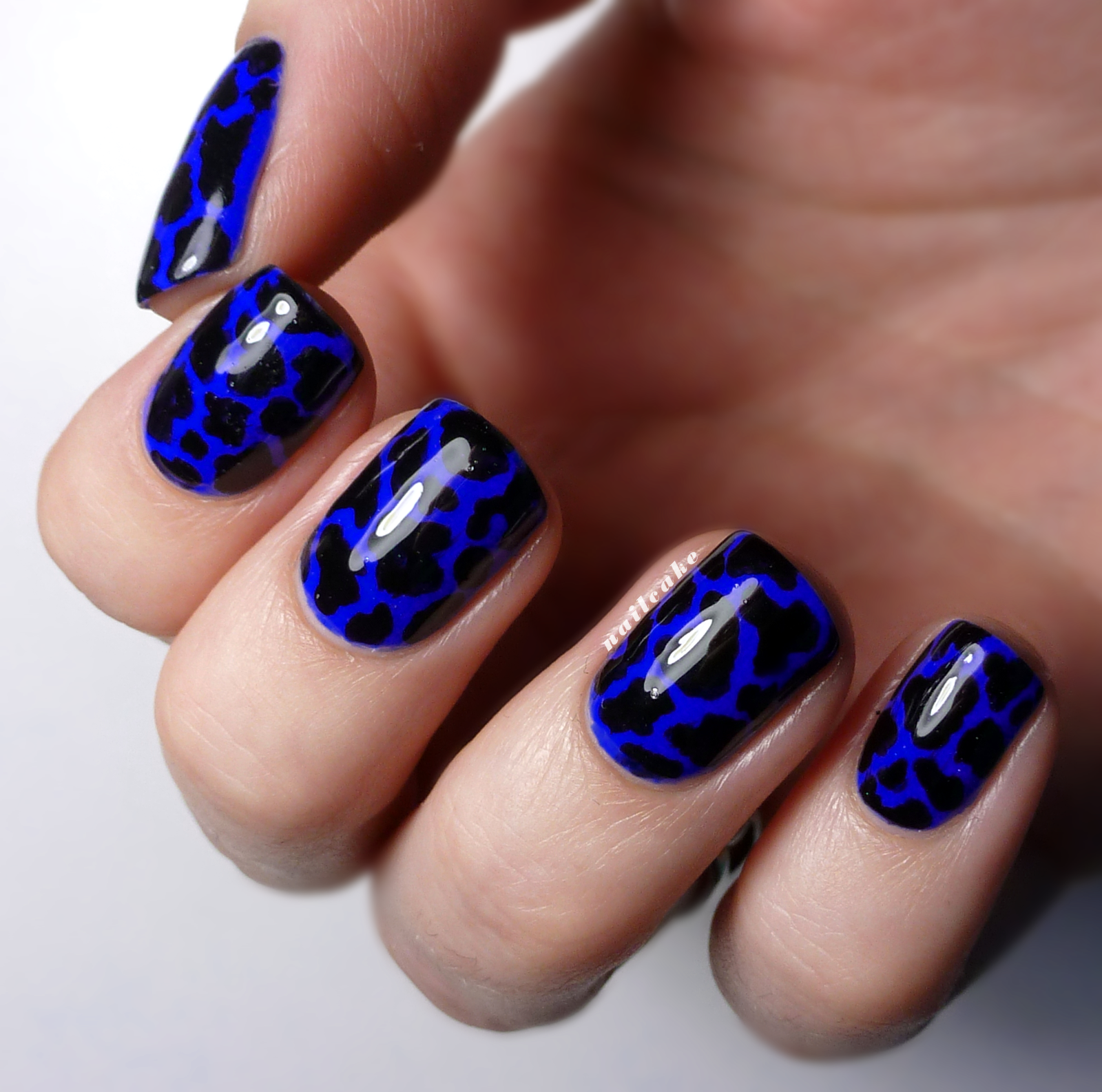 16 Blue And Black Nail Designs Images