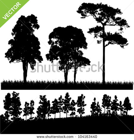 14 Forest Silhouette Tree Vector Images