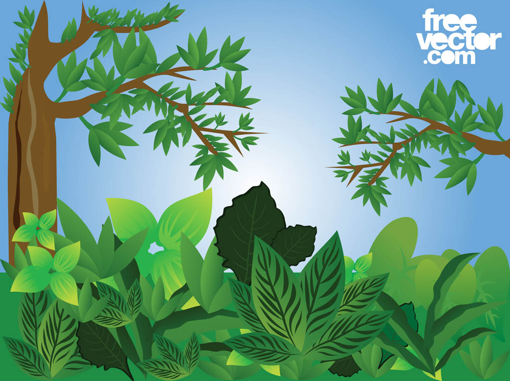 18 Free Forest Vectors Images