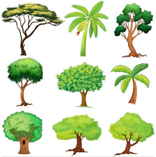 Free Tree Vector Graphics
