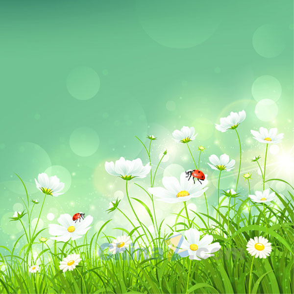 Free Vector Spring Flowers