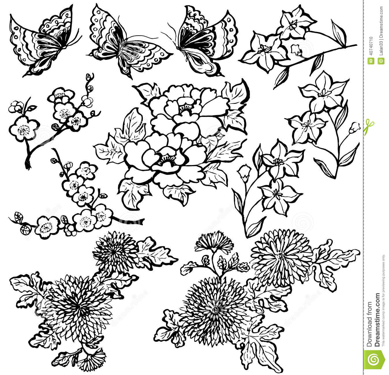 Japanese Flower Vector Illustration