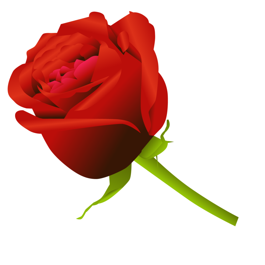 17 Simple Rose Vector Images