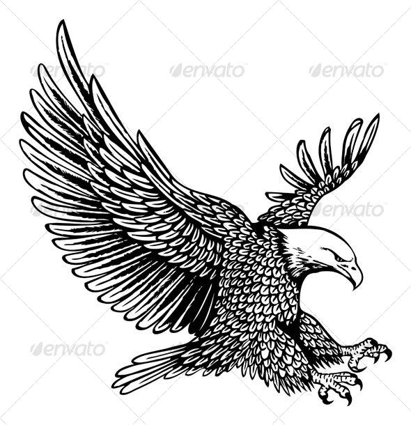 16 bald eagle vector images bald eagle vector art free