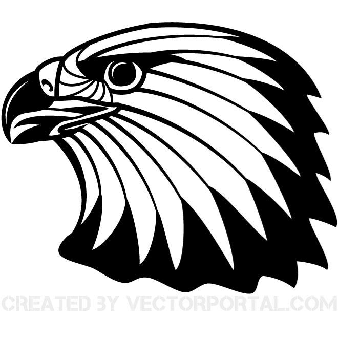 16 Bald Eagle Vector Images