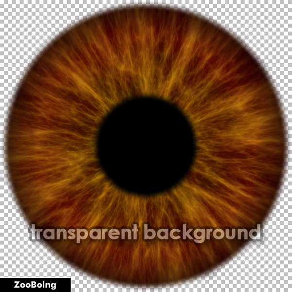 11 Eye Texture PSD Images