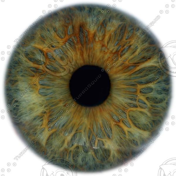 11 Eye Texture PSD Images - Brown Eye Texture, Human Eye ...