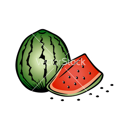 8 Free Vector Summer Watermelon Images