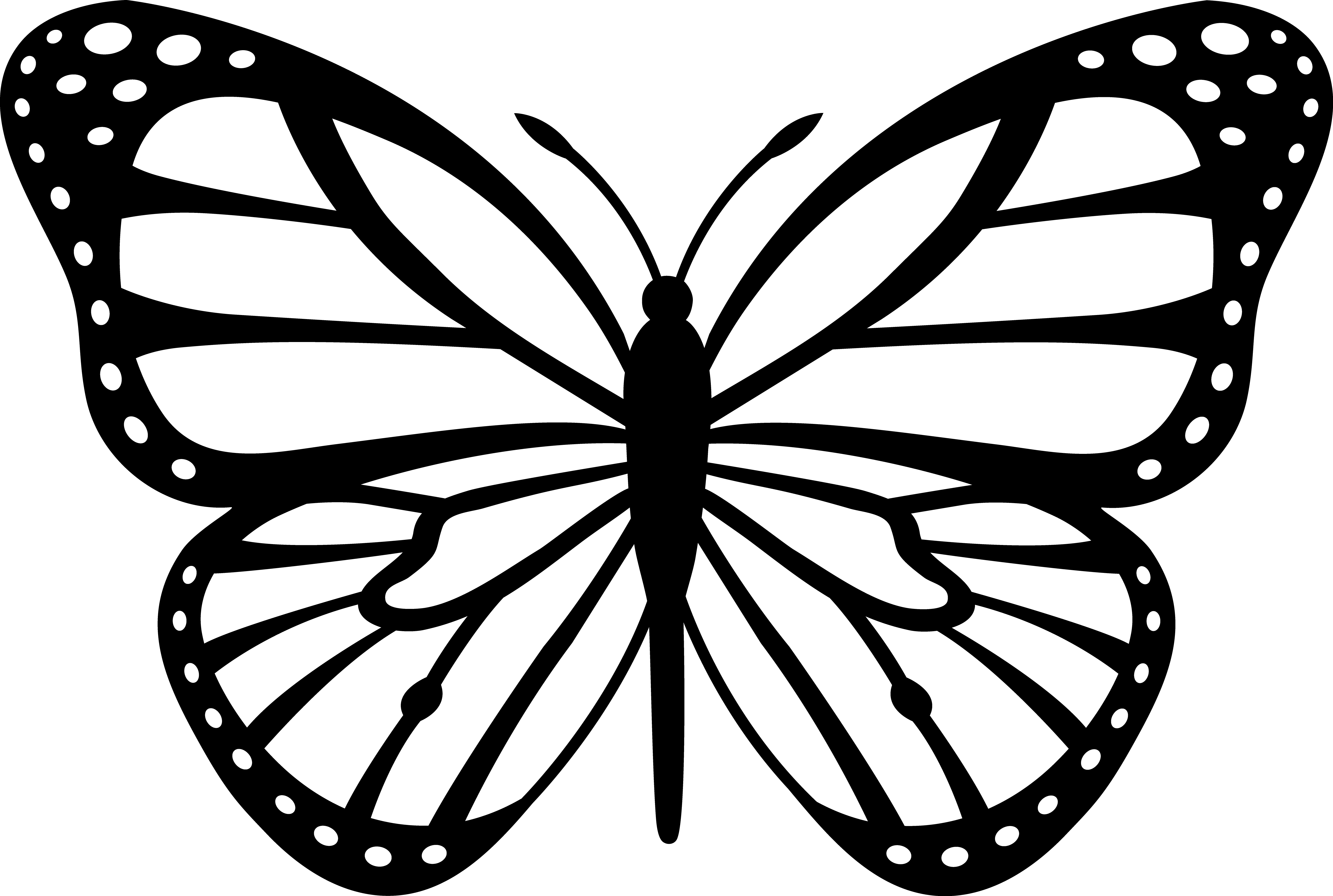 18 Butterfly Vector Art Images