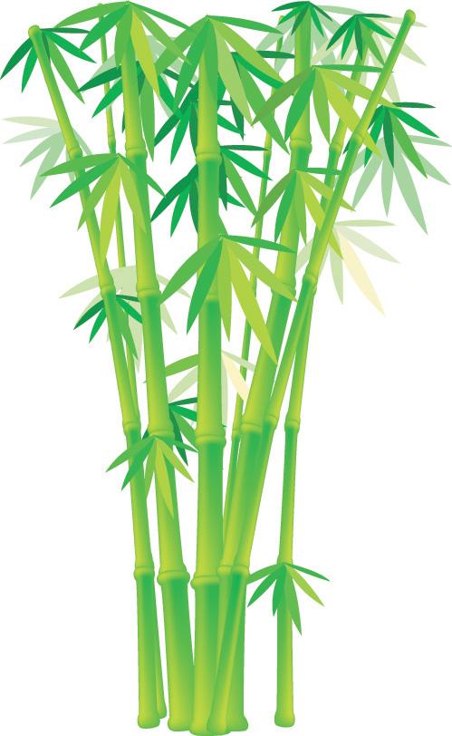 Free Bamboo Vector