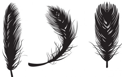 16 Free Vector Feather Images