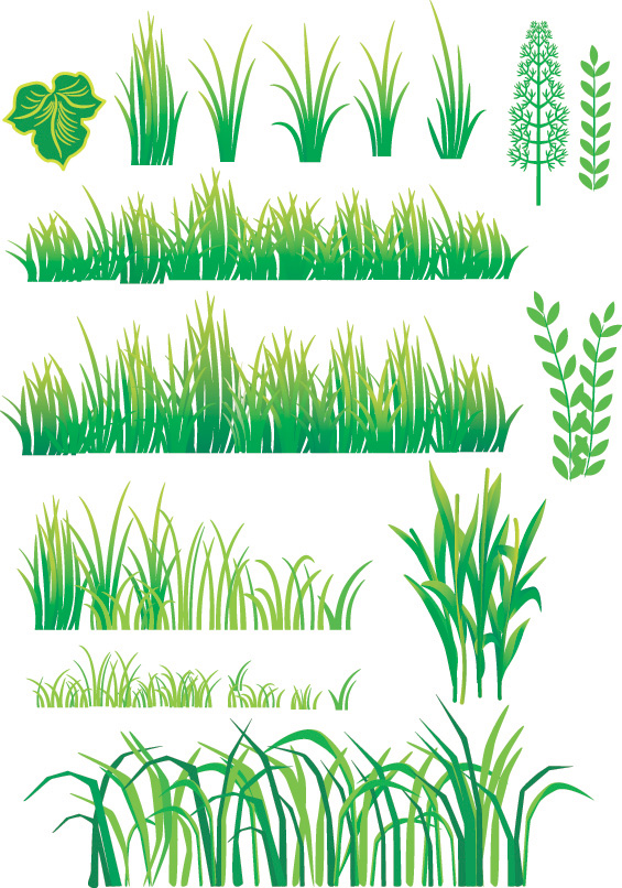 Grass and Bamboo Vector