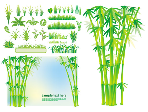 Grass Vector Art Bamboo