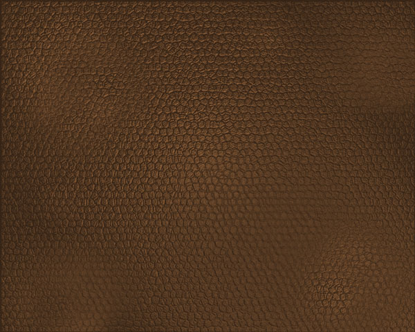 Leather Texture Photoshop Tutorial