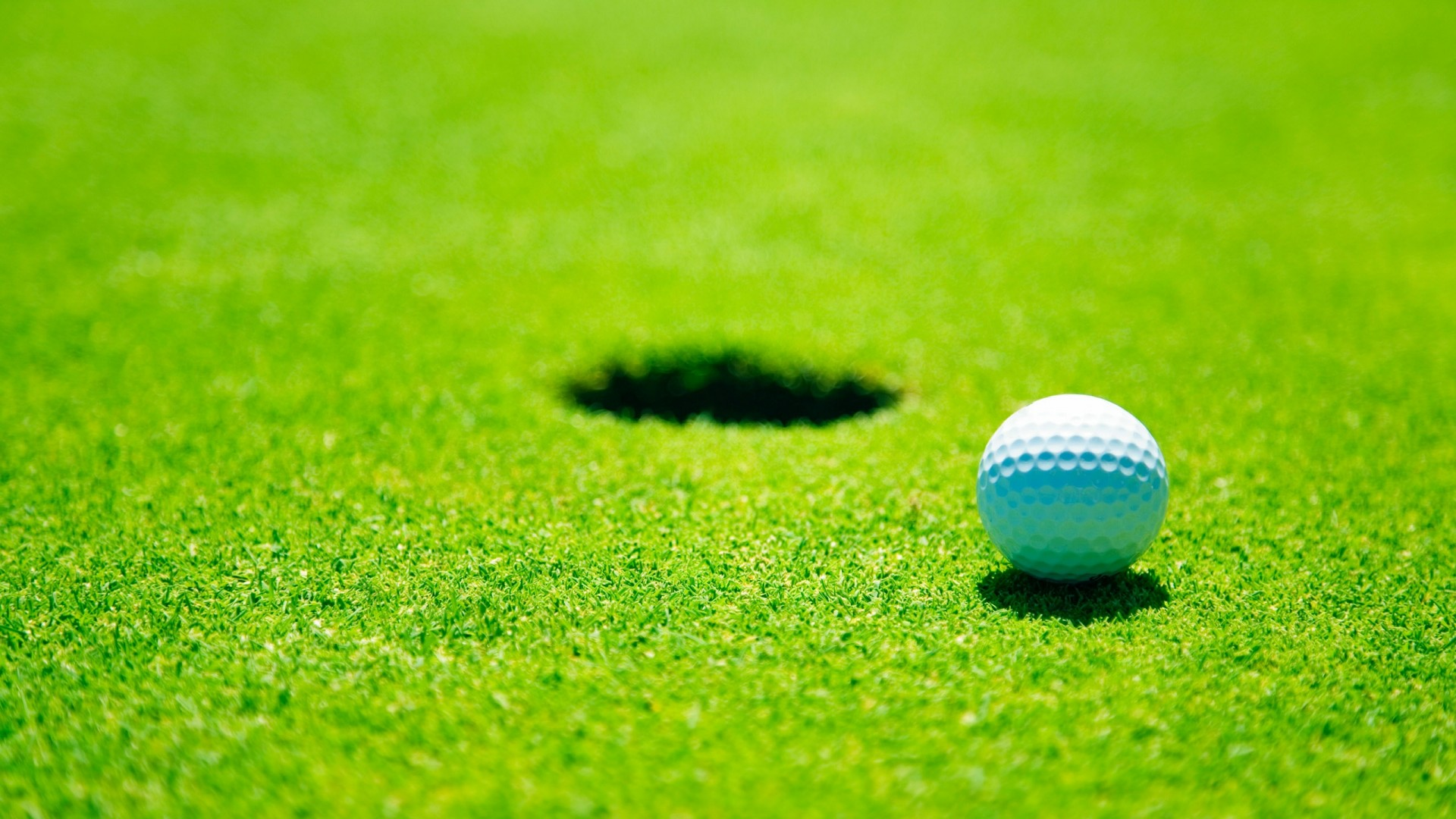 11 Golf Stock Photography Images