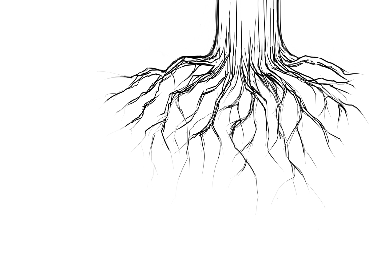 how to draw tree roots easy