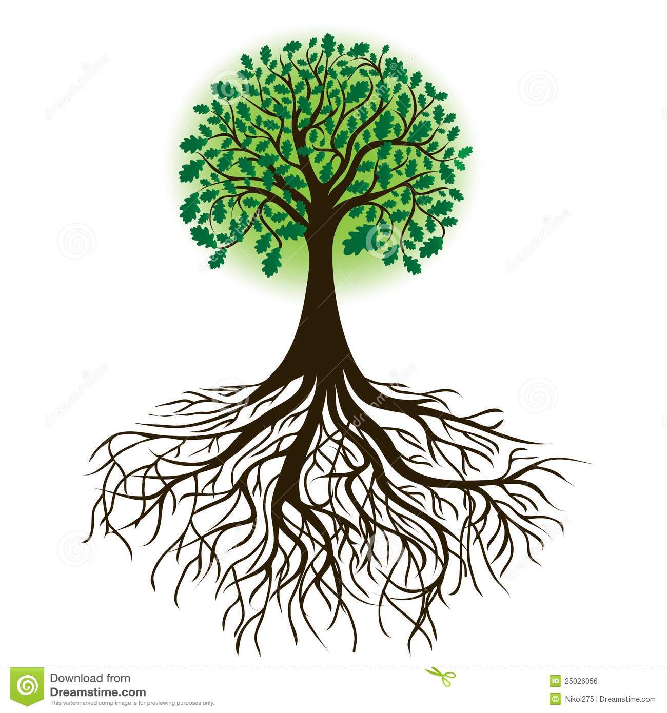 13 Tree With Roots Drawing Vector Images