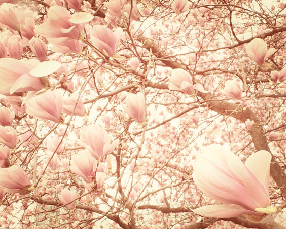 13 Vintage Spring Photography Images
