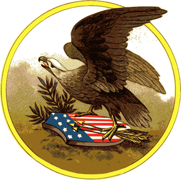 12 American Eagle Vector Art Images