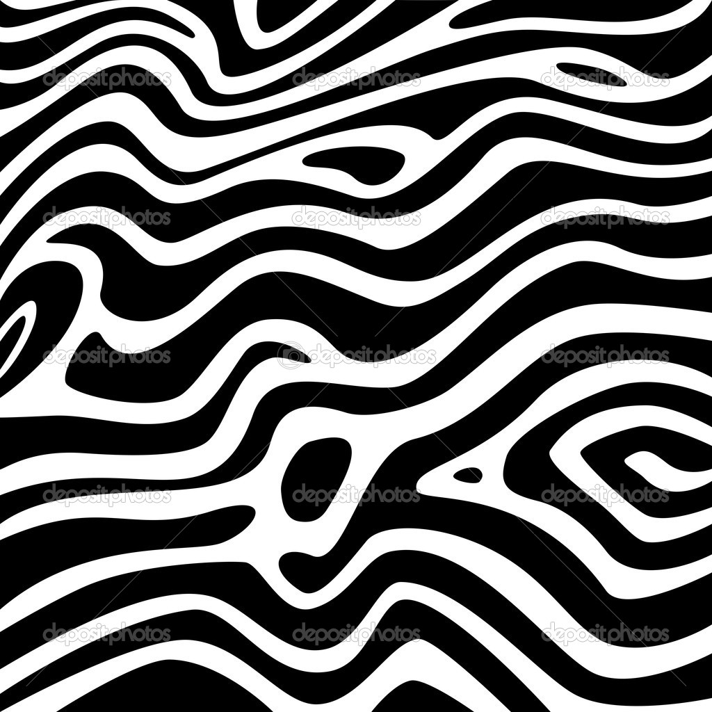 Black and White Zebra Texture