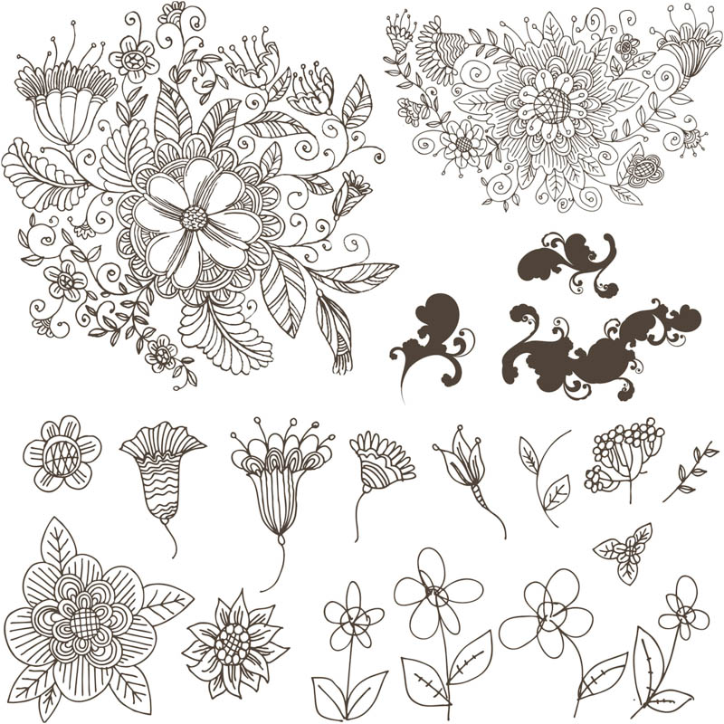Flower Line Drawing Pattern