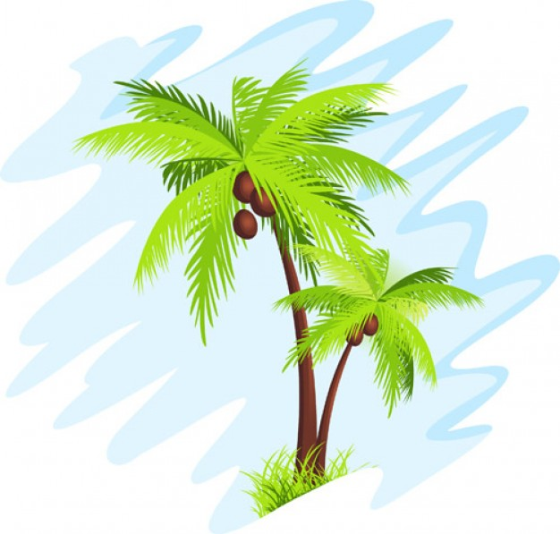 Palm Tree Vector Free