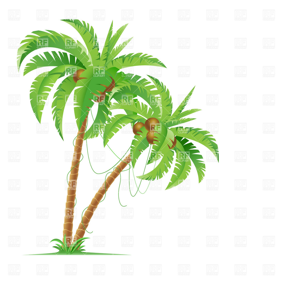 Vector Palm Tree Clip Art