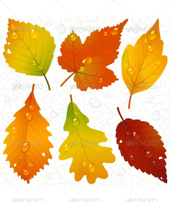 8 Vector Seamless Fall Leave Images