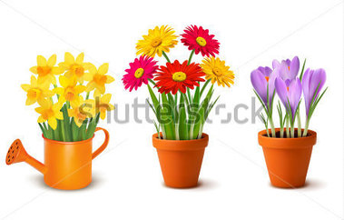 14 Flower Pot Watering Can Vector Images