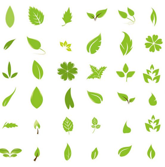 12 Organic Green Leaves Vector Images