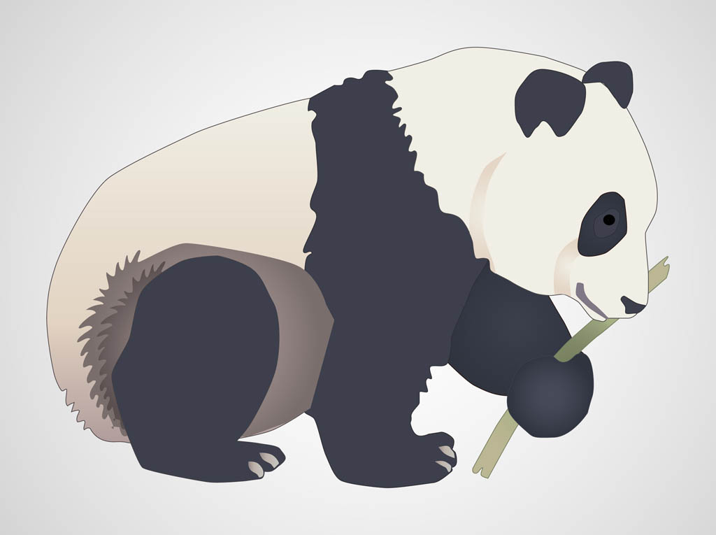 9 Panda Bear Vector Images